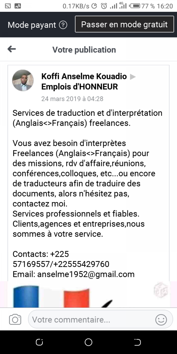 Translator / Interpreter English - French
