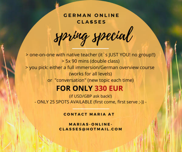 GERMAN ONLINE CLASSES: 330,- EUR - 10 one-on-one classes (5x 90mins)